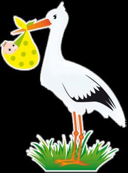 Storklja-ob-rojstvu_slider
